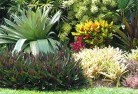 Abermain Bali style landscaping 6old